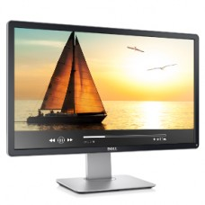 Dell LED Display - P2313H